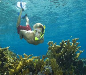 Snorkeling in Nassau Bahamas