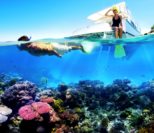Why Snorkeling in Freeport is the Best Thing To Do