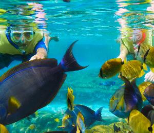 Snorkel Combo Tours