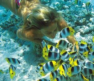 Freeport Snorkeling