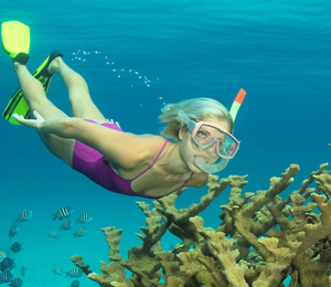 Top 3 Snorkeling Tours in Freeport Bahamas